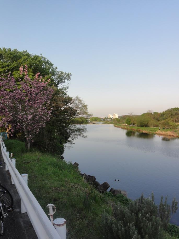20120429笹井ダム