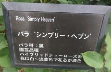 20120601智光山緑化植物園 シンプリー・ヘブン ・プレート
