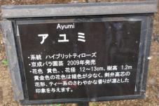 20120601智光山緑化植物園 アユミ・プレート