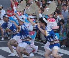 20120805阿波踊り葵27