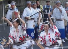 20120805阿波踊り葵25