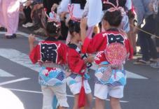 20120805阿波踊り016
