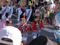 20120805阿波踊り012