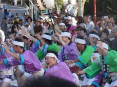 20120805阿波踊りH4