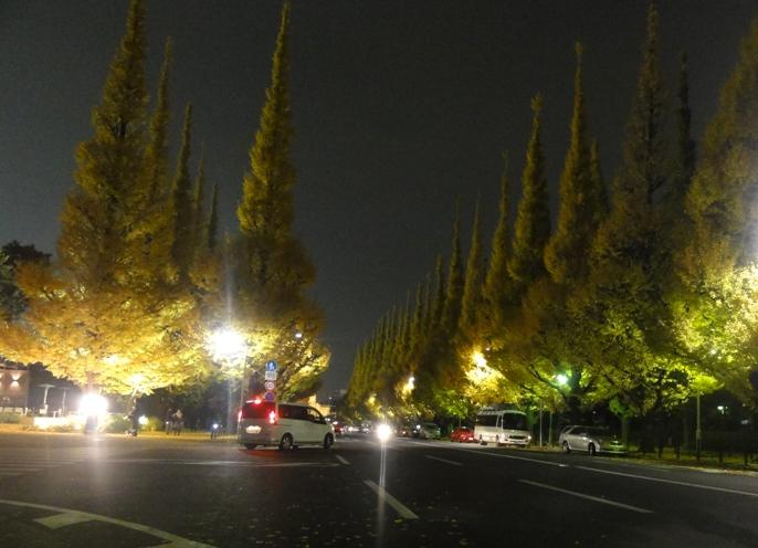 20121130外苑の銀杏 A