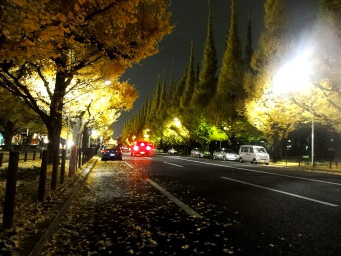 20121130外苑の銀杏 F