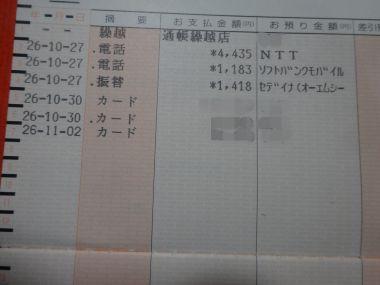 mini_DSC00123.jpg