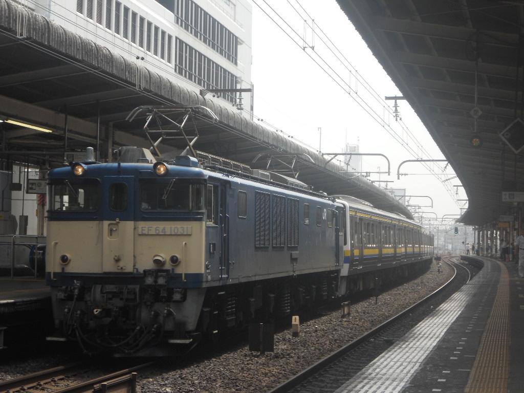 千マリ211系 NN配給 (2)