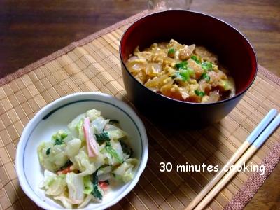 鶏のササミフライDEカツ丼と茹で野菜の胡麻ドレ和え