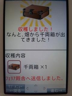 120829_125003_meishi.jpg