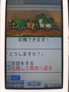 120829_125106_meishi.jpg