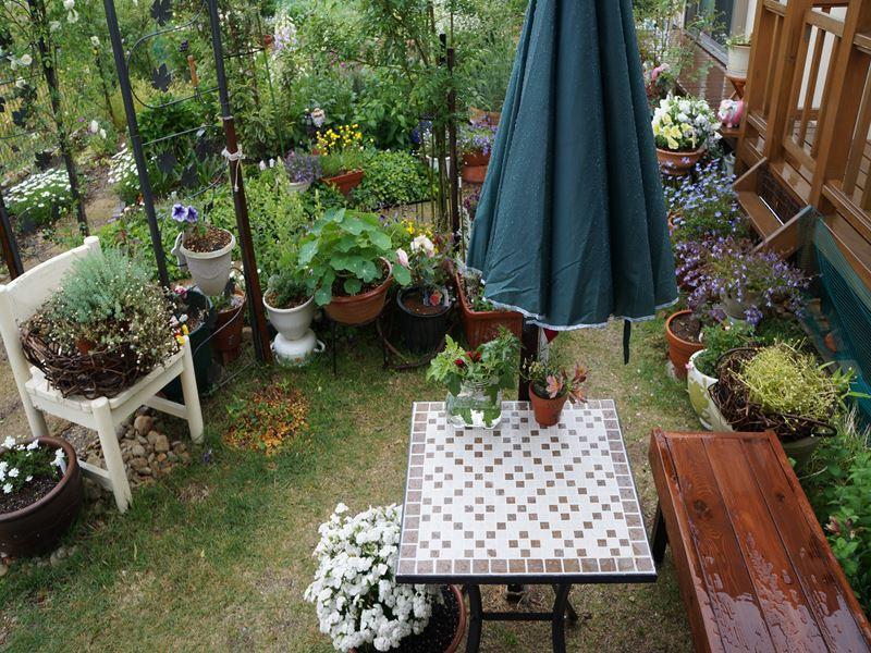 雨のガーデン