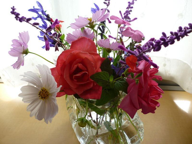 今、咲いてる花で・・