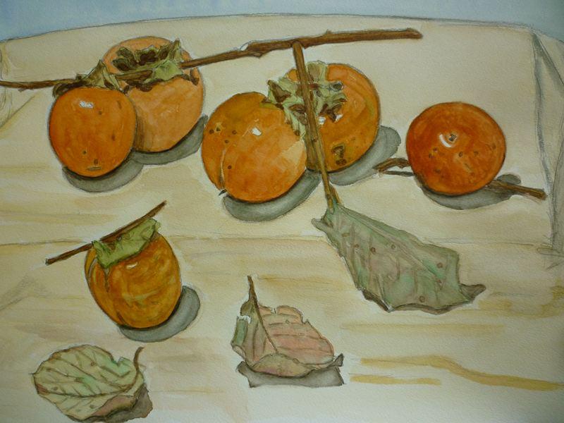 頂いた柿の絵