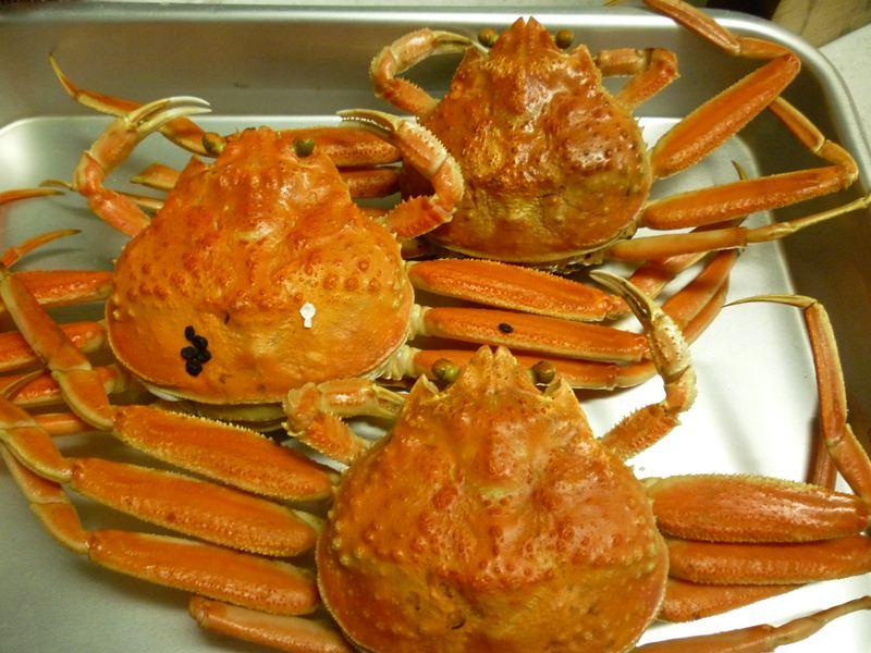 こうばこ蟹