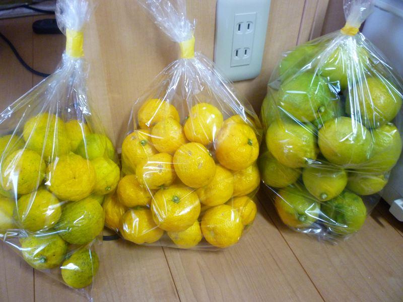 ゆず・すだち・レモン