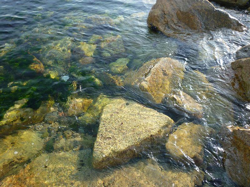透きとおった海
