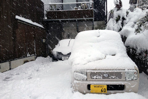 snowdays.jpg