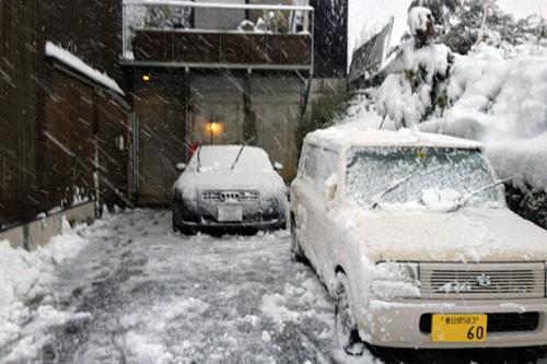 snowdays2.jpg