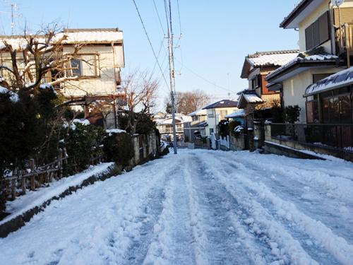 snowdays3.jpg