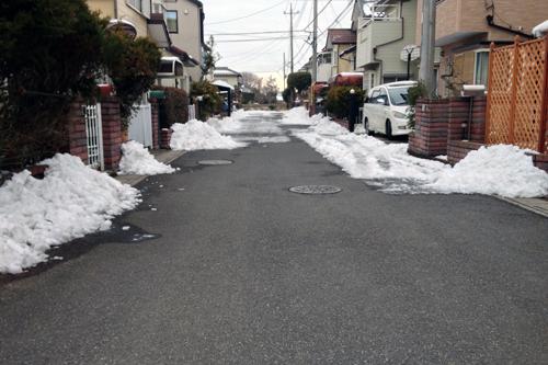 snowdays4.jpg