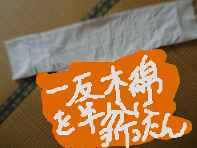 DSC01524.jpg