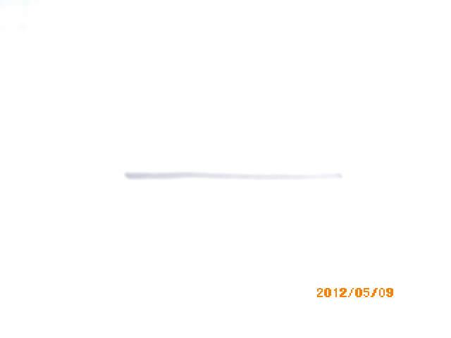 IMGP0005_20120509230431.jpg