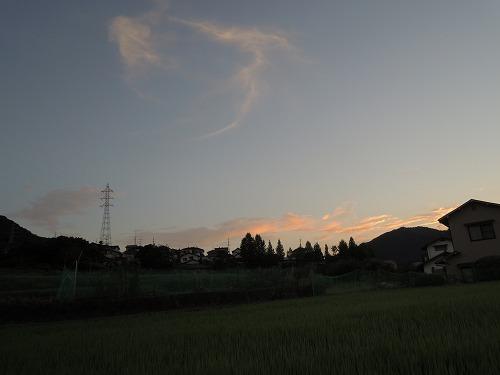 DSCN1317.jpg