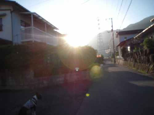 DSCN2789.jpg