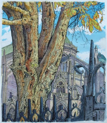 ノートルダム寺院横の巨樹、縮小(横450px)