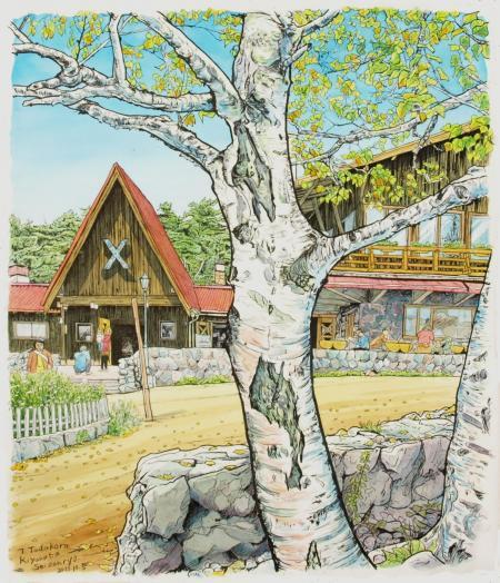 清里高原、清泉寮の白樺