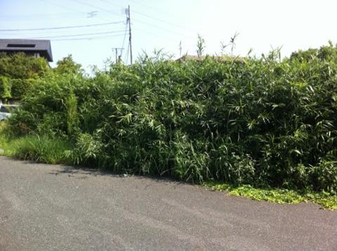 福岡草刈り業者