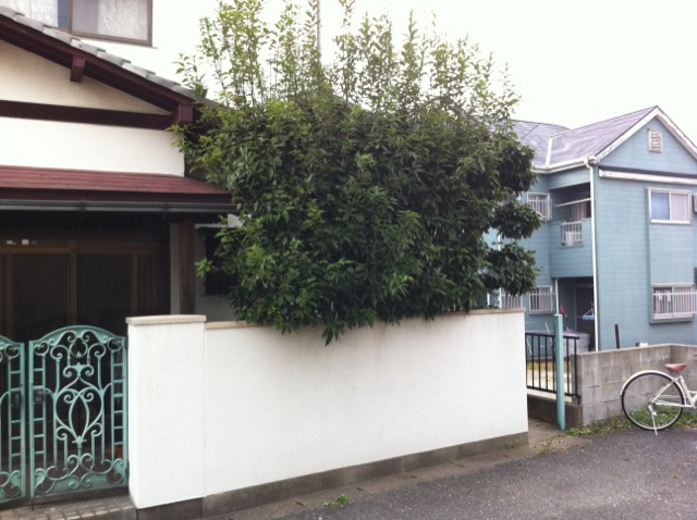 福岡 植木屋 造園屋