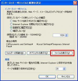 インターネット一時ファイルと履歴の設定 > ファイルの表示