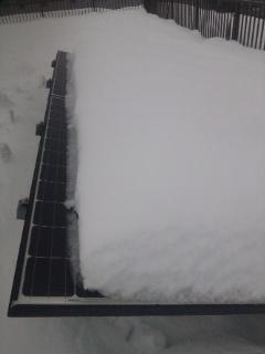 2014/02/14 またまた大雪50cm