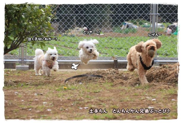 250329-10.jpg