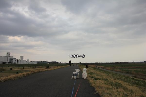 250402-4.jpg