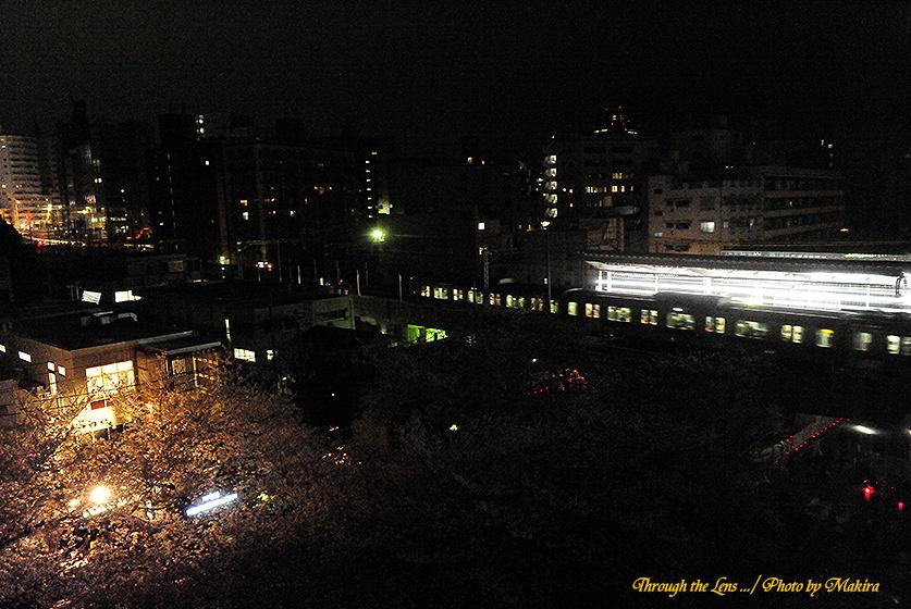 東急東横線中目黒駅夜桜