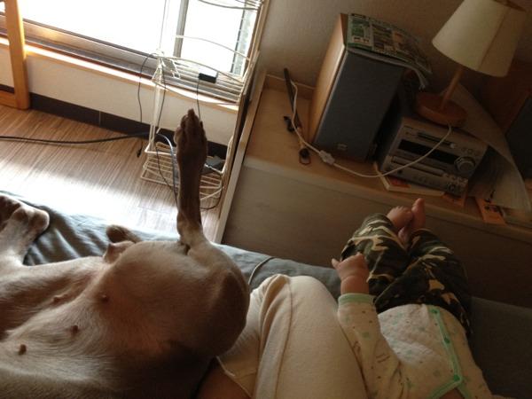 fc2blog_201205181404267af.jpg
