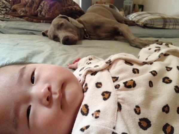 fc2blog_20120522111612e48.jpg
