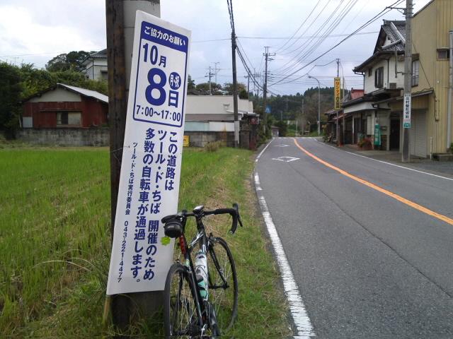 SN3O0954.jpg