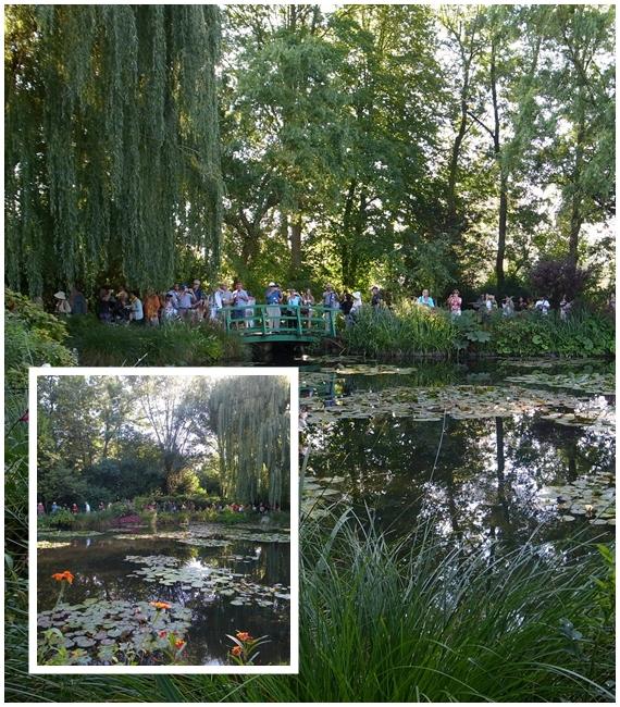 睡蓮の池1