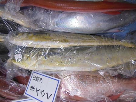 20121129sa3.jpg