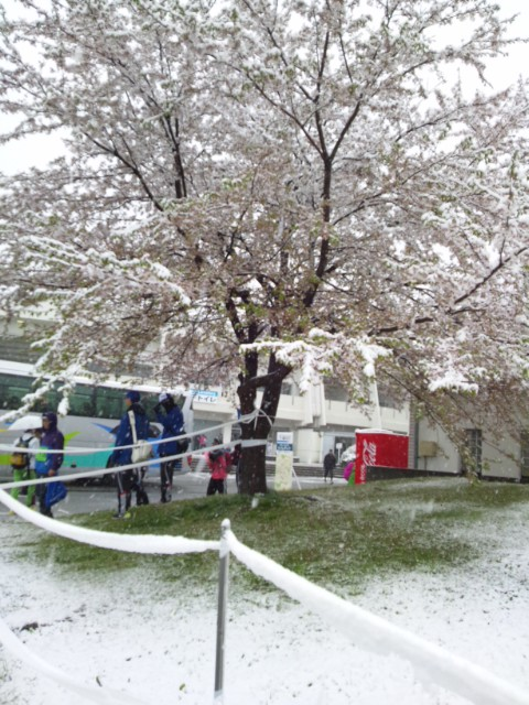 雪の北長野運動公園