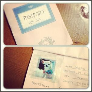 まるパスポート1