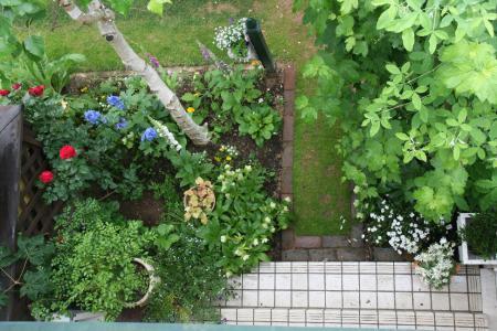 2012-05-25_01.jpg