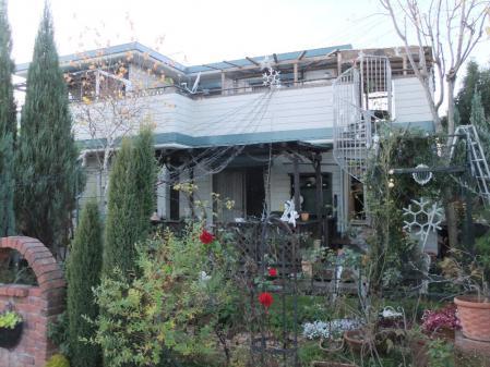 2012-11-25_22.jpg
