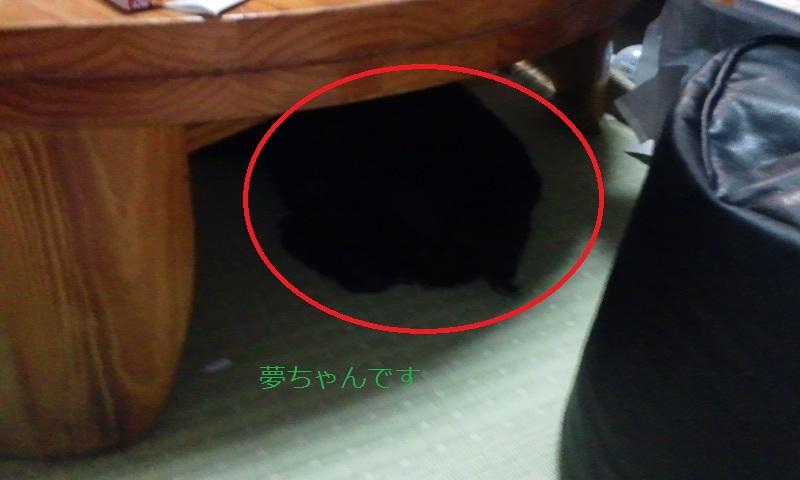 004_20120825222406.jpg