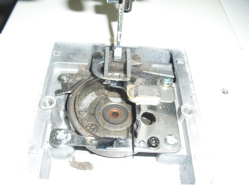MONAMI1870-3.jpg