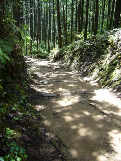 熊野古道_convert_20120924190228